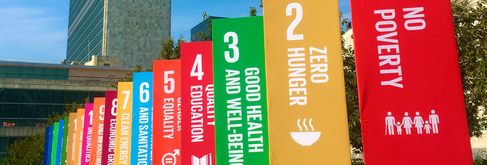 SDG Flags UN building NY 2019 - Banner