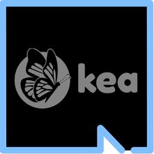 Image of Kea Medicals